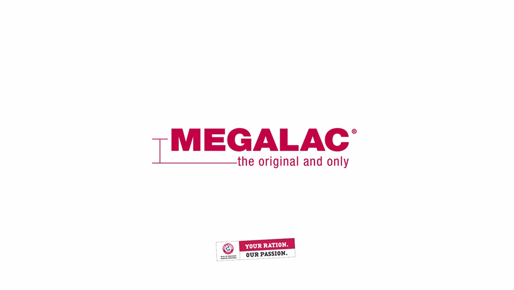 MEGALAC Video