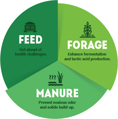 Feed, Forage and Manure chart